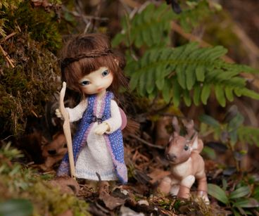 Fairy Forest Mysteries